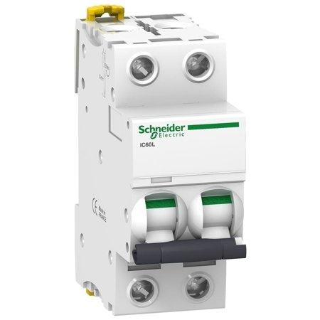 Leitungsschutzschalter iC60L-K25-2 C 25A 2- P+E